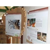 exposition nature